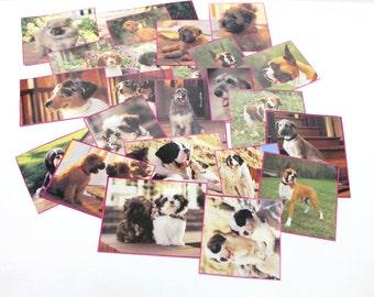 handcut collection of dog images,dog image ephemera kit,Craft pack for scrapbooks, smash book, collage,A12,scrapbook dog pictures,dog images
