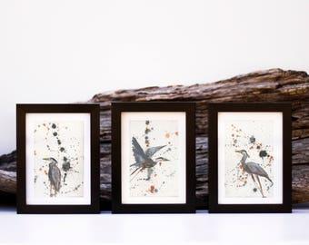 Pack of 3 great Blue Heron