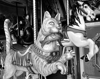 Boston Common Merry-Go-Round Cat, Carousel,  cat photography, cat art, cat print, cat decor, merry go round, carnival