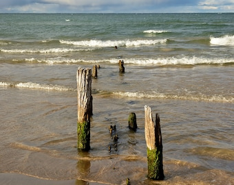Remnants - Ludington State Park - Michigan Photography - Stock Photography