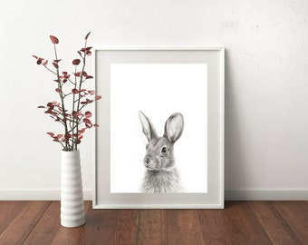 Cottontail Charcoal