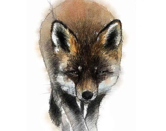 Red fox | Limited edition fine art print from original drawing. Free shipping.