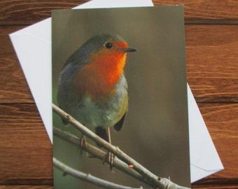 Wildlife Greetings card C6 Portrait - Robin