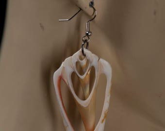 Volute Shell Earrings