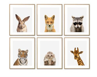 Animal Print, Baby Animal Prints, Animal Prints, Nursery Animal Print, Nursery Prints, Woodland Animals, Animal Nursery, Prints For Nursery