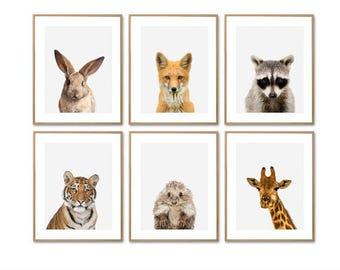 Imprimé animal, bébé imprimés, imprimés, pépinière imprimé Animal, pépinière estampes, animaux de la forêt, Animal crèche, impressions pour chambre d'enfant