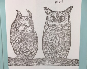 What? Two Owls