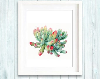 Succulent print of watercolour painting, cactus, botanical painting, green home decor art print, giclee print