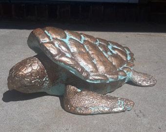 Loggerhead turtle box