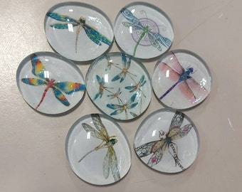 Set of 7 colorful super strong glass magnets, Dragonfly magnets, nature, floral refrigerator magnets, dragonflies