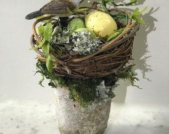 Floral ARRANGEMENT BIRD EGGS on Nest Garden  Pot Grapevine Nest Spring Summer Pottery Pot