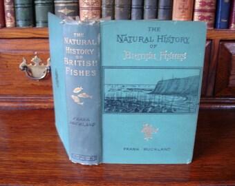 Natural History of BRITISH FISHES