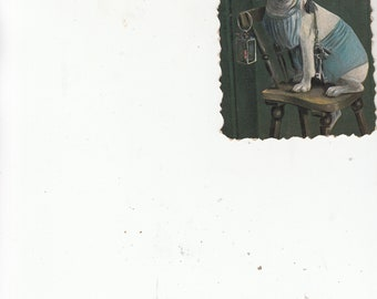 Undivided Back Bulldog Dog Night Watchman/Sweater/Keys/Hat/Pipe,Humanized Aura Antique Postcard Must See