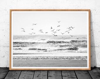 Beach Wall Art, Wall Art Print, Printable Large Poster, Seagull Wall Art, Coastal Wall Art, Nature Prints, Modern Art Print, Beach Decor