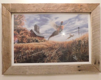Off The Beaten Path (SOLD OUT, Limited) framed  wildlife print (#5334)