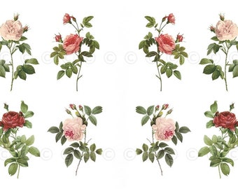 Rose Decals, Old Fashioned Roses, Decorate Candles, Soap, Glass, Home Decor, Furniture, Magnets, Jewelry, Craft Projects, Scrapbooks