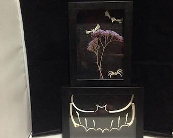 Fledermaus-Knochen shadowbox oder Bug Knochen Shadow box