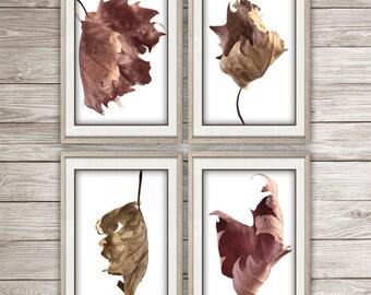 Downloadable photograph, poster, photo, wall art, print, leaf, autumn, decor, digital download
