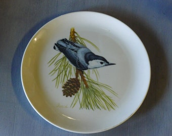 White Breasted Nuthatch collectible plate
