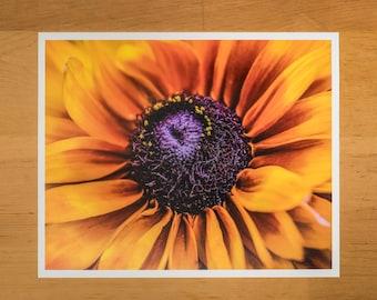 Photo Print of Yellow Coneflower from DebSladekPhotography