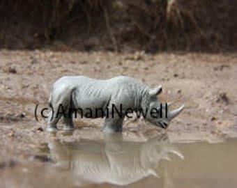 Rhino at the Water