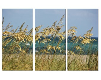 Beach Sea Oats Canvas Triptych, 3 Panel Fine Art, LARGE, Ready to Hang