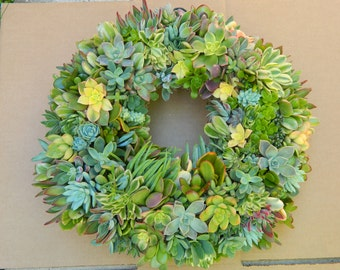 "Succulent Wreath - Round Live Succulent Wreath - 18"" Succulent Wreath for Gift Giving, Home Decor, Wedding Centerpiece"