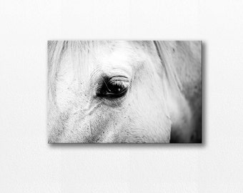 horse photography canvas black white photography 12x18 20x30 fine art photography equine white horse canvas print horse eye wall art gallery