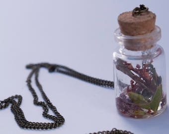 Bottle Necklace Bones and Nature