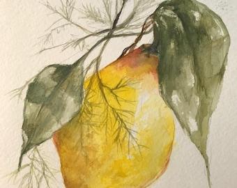 Lemon and Dill     5 x 7      Original Watercolor