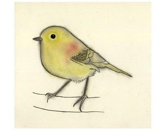 "Bird Art -  Stefan -   4"" X 6"" print - 4 for 3 SALE"