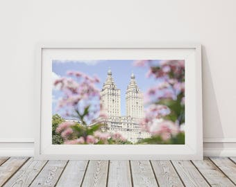 New York photography, New York Gift, New York City Print,  pink flowers, Central park,  sale print, 8 x 12 print, New York print