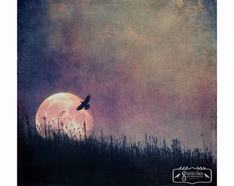 Guide me to the moon, Fine art print