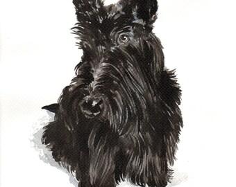 Scottish terrier original watercolour painting