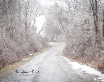 Fog and Ice on a Country Road