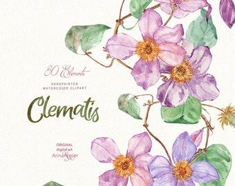 Clematis Flowers WATERCOLOR Clipart, Spring Flowers ,digital flowers, DIY invites, Clipart, scrapbooking, wedding invitations, florals scrap