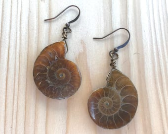 Fossil earrings, Ammonite earrings, Natural earrings