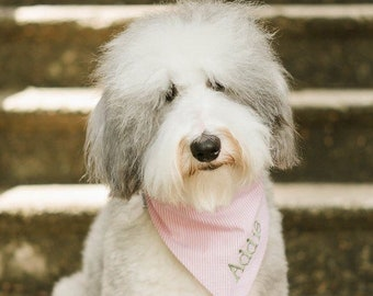 Personalized Seersucker Dog Bandana - Custom Pet Bandanas - Best Puppy Dog Gifts by Three Spoiled Dogs
