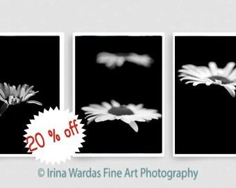 Modern black wall art decor, minimalist art, vertical floral art set, white on black bathroom set of 3 photo prints, white daisy flower