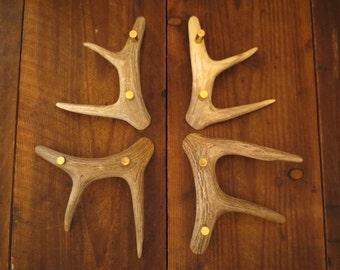 Incroyable Quality 3 Tine Handle Handles Whitetail Deer Antler Cabinet Doors Drawers Hardware  Pulls.. The Original