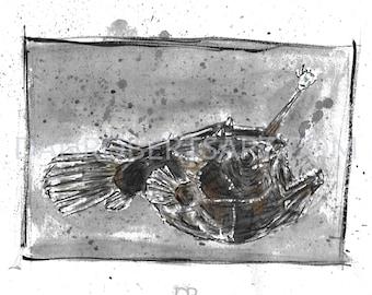 100 Animals, 100 Days: 51/100 The Football Fish DIGITAL FILE