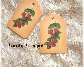 STRAWBERRY TAGS ... Fruit / Labels / Strawberries / Farm / Food / Produce / Price Tags / Vine / Plant / Garden / Vintage look / Packaging