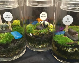 Moss Terrarium, Desktop Gift, Gift For Coworker, Gift for Shut-in, Merry Christmas Planter, polar bear, Moss Love, Moose,  Penguin,