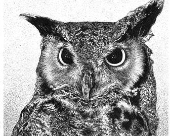 GREAT HORNED OWL Giclée Print