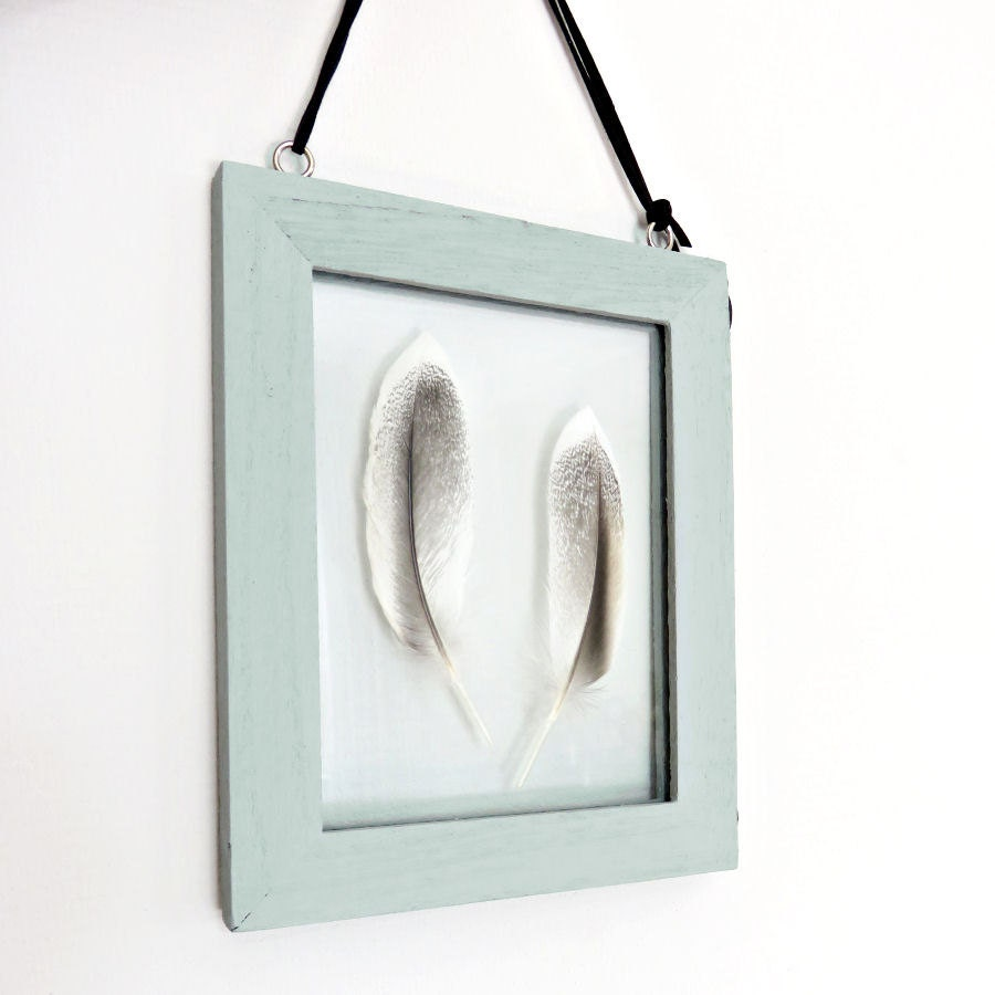 Feathers in floating frame // double sided glass frame // suede cord ...