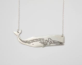 Whale Necklace - Science Jewelry - Whale Skeleton - Nature Jewelry - Nautical Jewelry - Anatomical Necklace - Silver Whale - Ocean Jewelry