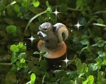Fairy garden, micro mini squirrel , tiny squirrel, miniature garden, micro squirrel, miniature squirrel, micro fairy squirrel
