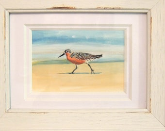 Red Knot Sandpiper Original Gouache mini painting matted and framed Shore Bird Jersey Shore Bird Beach birds Delaware Bay