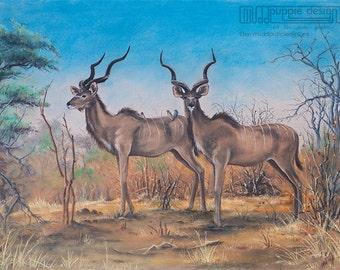 A3 DRAWING AFRICAN Artwork Kudu ART desert landscape bush Wildlife Conservation illustration blue yellow green brown nature trees deer buck