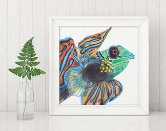 Mandarin fish, ocean, sea life, aquatic fish, watercolour print